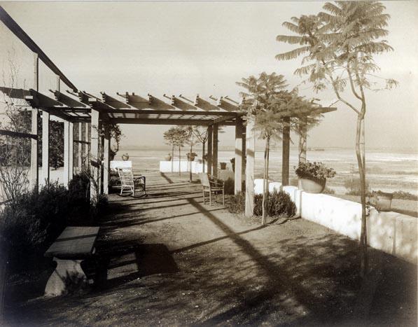 Jacaranda Walk, 1928.jpg