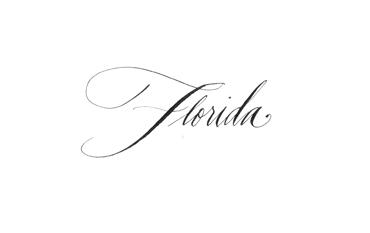 http://www.aspiringkennedy.com/florida/
