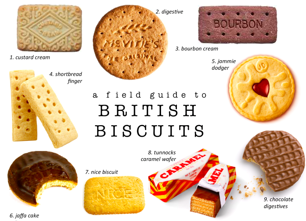 A Field Guide to British Biscuits — Aspiring Kennedy