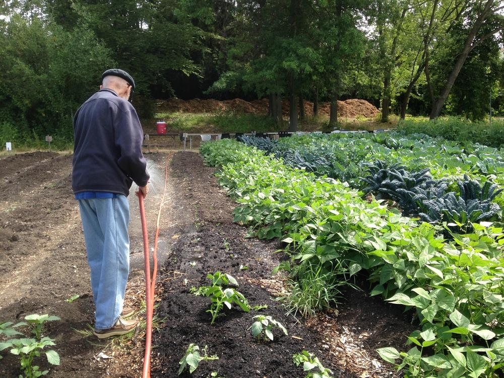 farm - mike todd watering.JPG