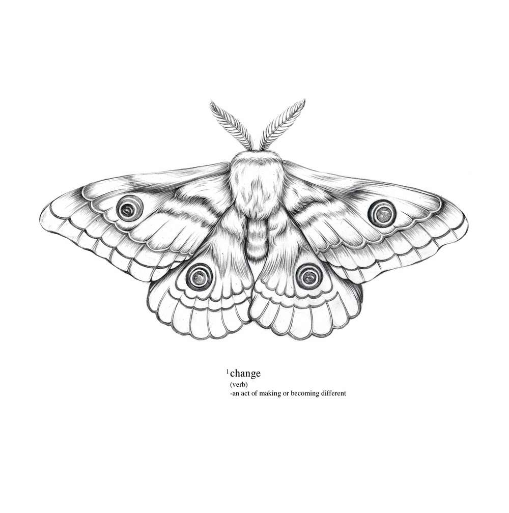 Moth-wip.jpg