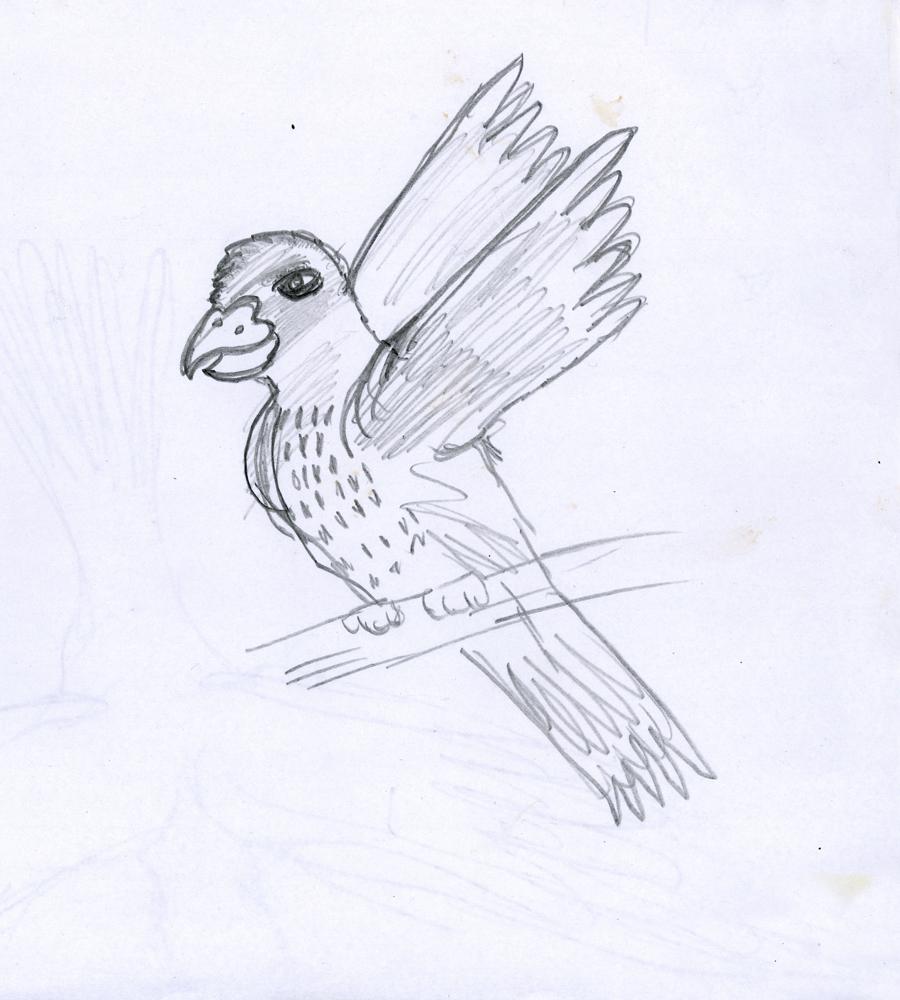 flock_07.jpg
