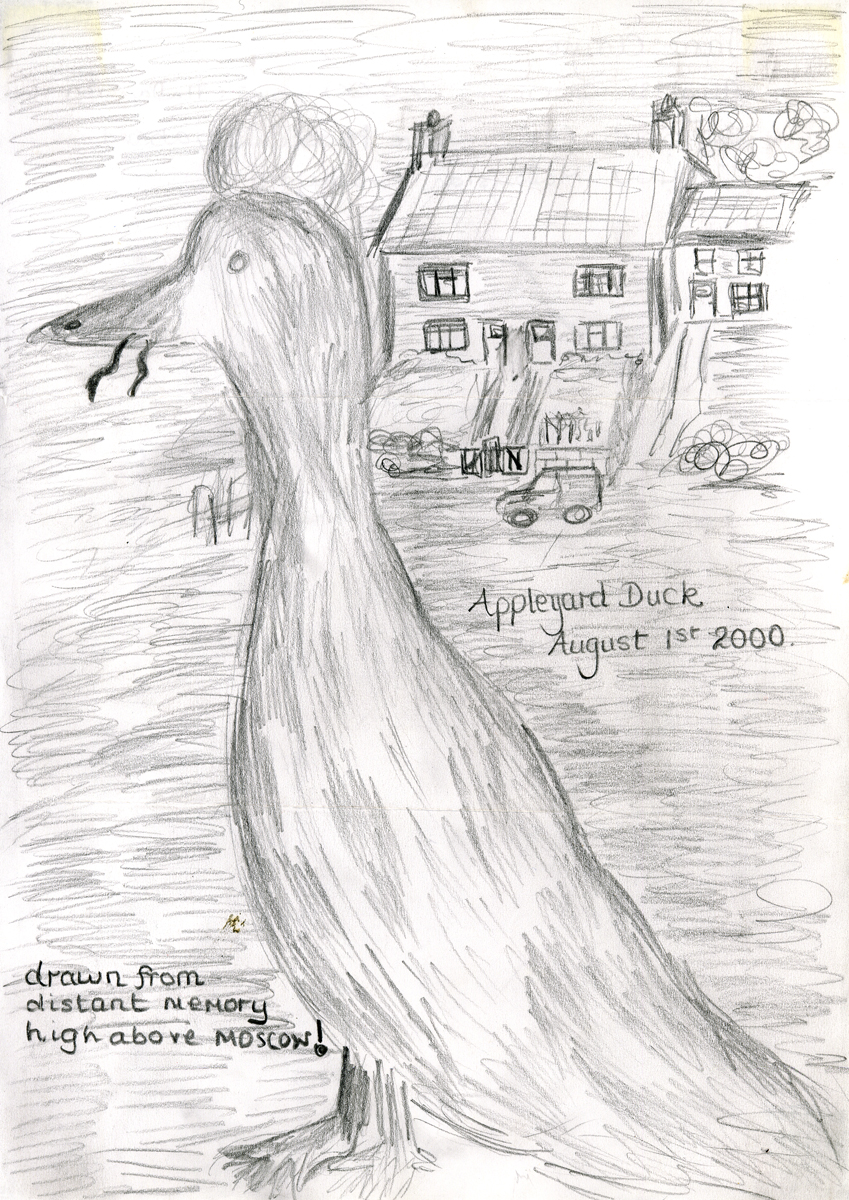 flock_30.jpg