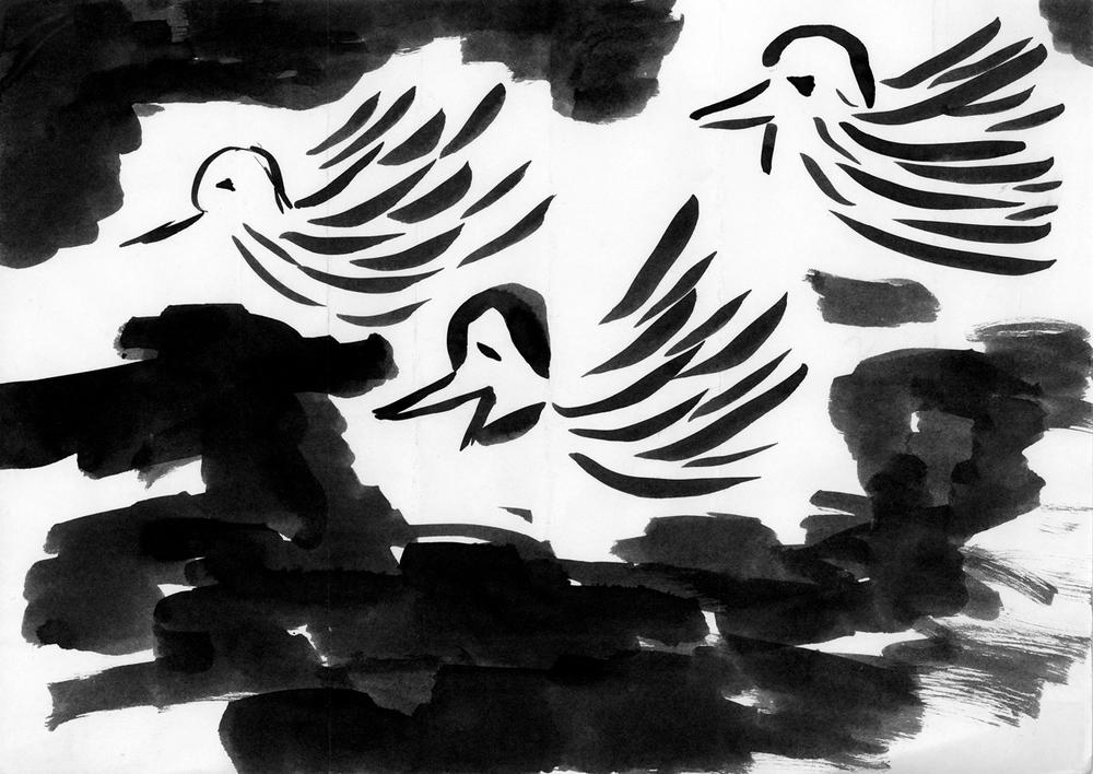 flock_42.jpg