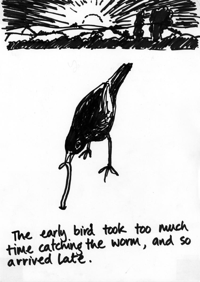 flock_73.jpg