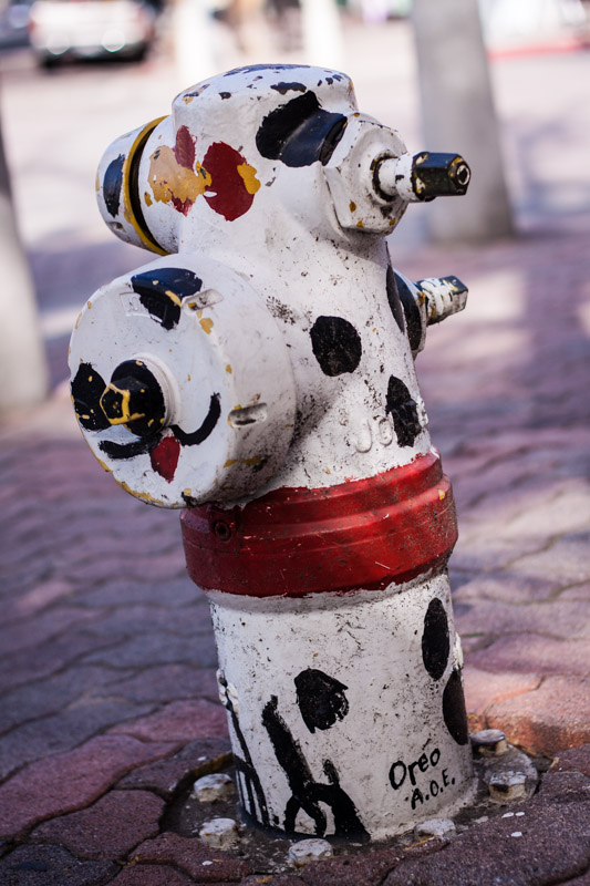 Taking a stroll around Carlsbad I noticed they painted many of the fire hydrants downtown and long the coast. Click on the photographs below for more...