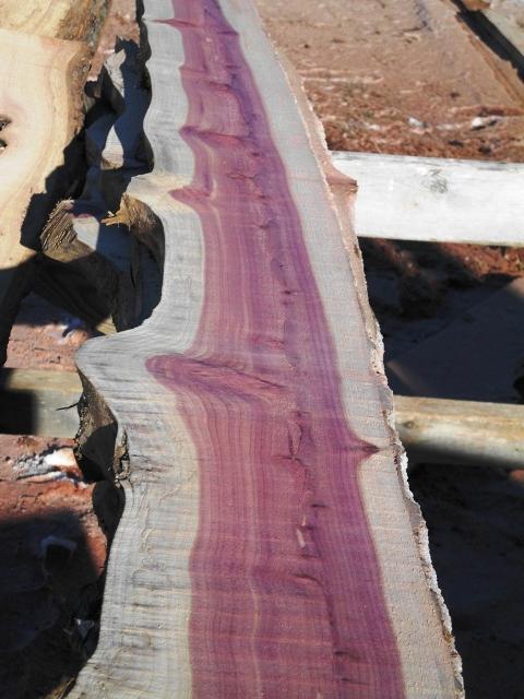 Live edge cedar slab