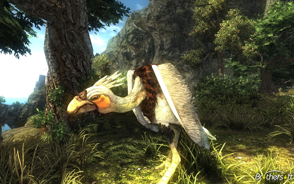 Or, you know, you could fight some bird animals. Sure.
