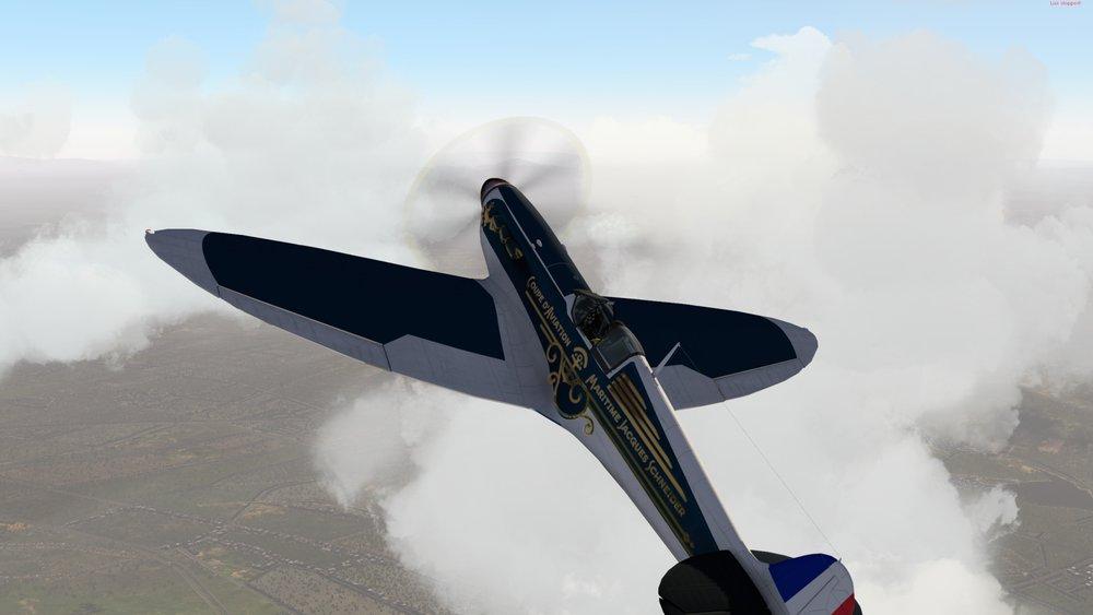 RWD_Spitfire_81.jpg