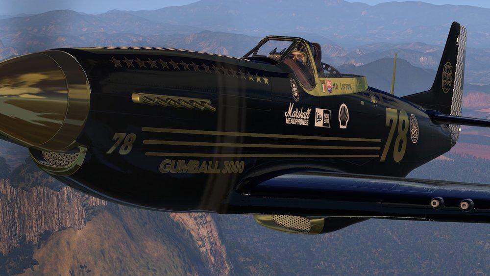 P-51D_110.jpg