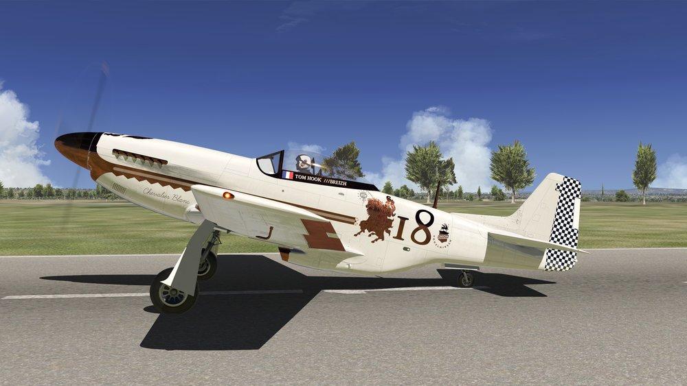 LIVERY - P-51D CUSTOM