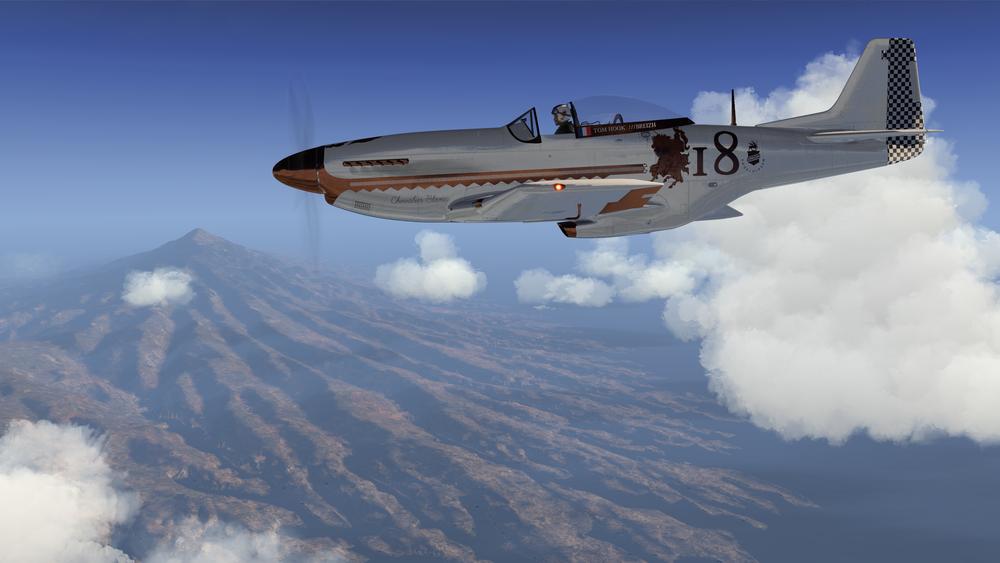 P-51D_116.png