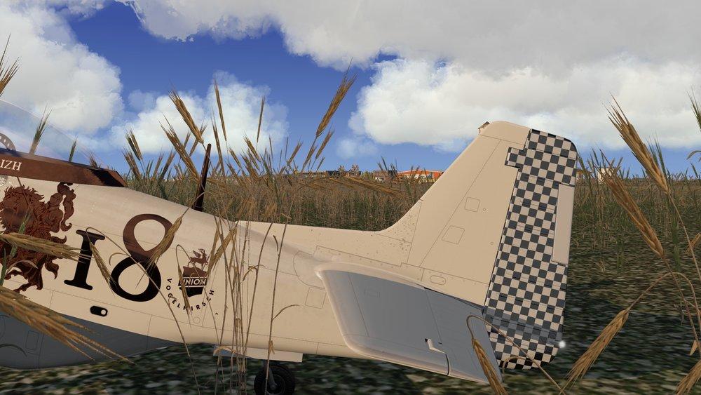 P-51D_99.jpg