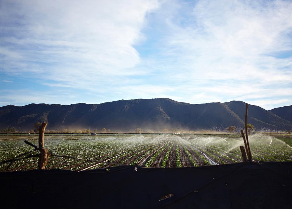 Las Cabras Field.jpg