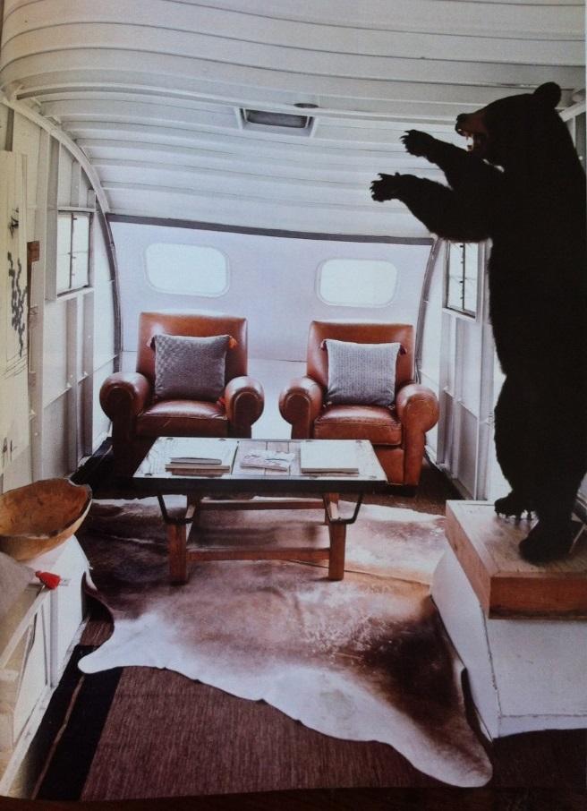 Bear in Airstream 3.jpg