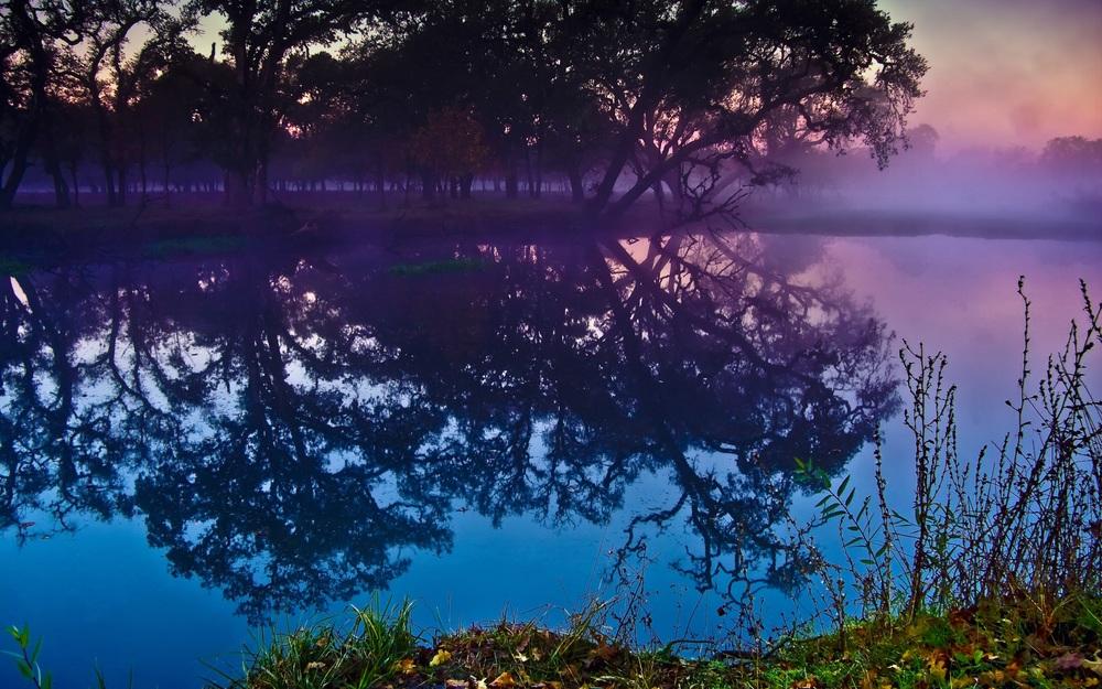 Sebastopol Lagoon.jpg