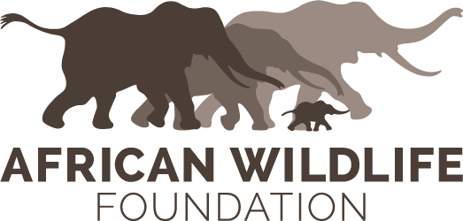 african-wildlife-foundation-logo.png