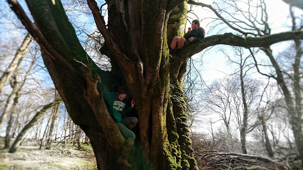 You're never too old. Climb 'em and climb 'em high (or to the first branch if your name is Rhianna). We stumbled across this mighty tree on a dog walk and spent a while just hanging around.