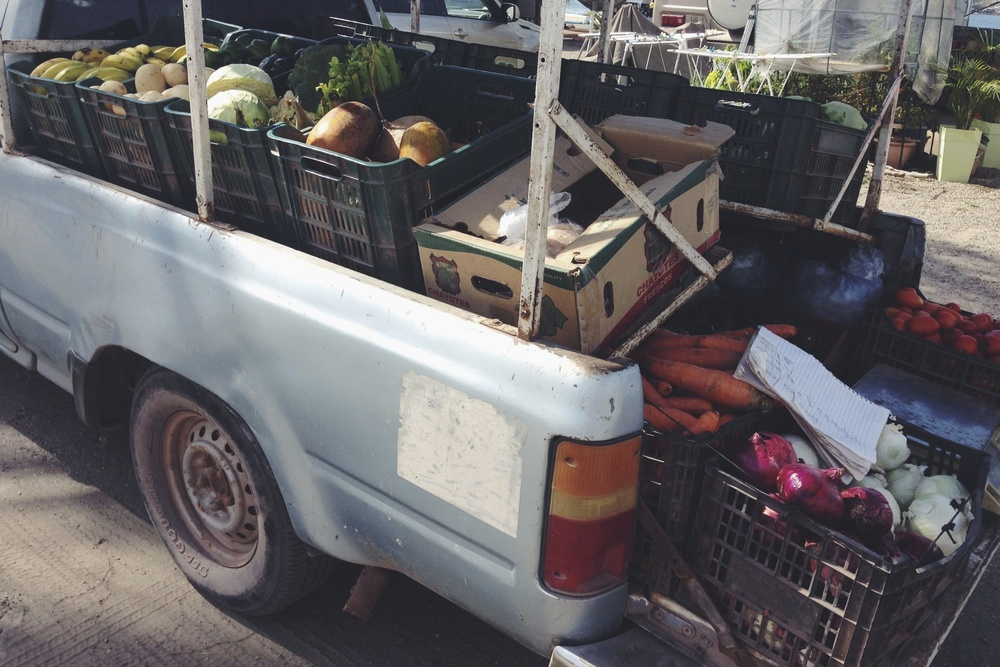 A couple trucks come around to the RV park each week bringing fresh fruits and veggies. Can't beat having the grocery store come to you!