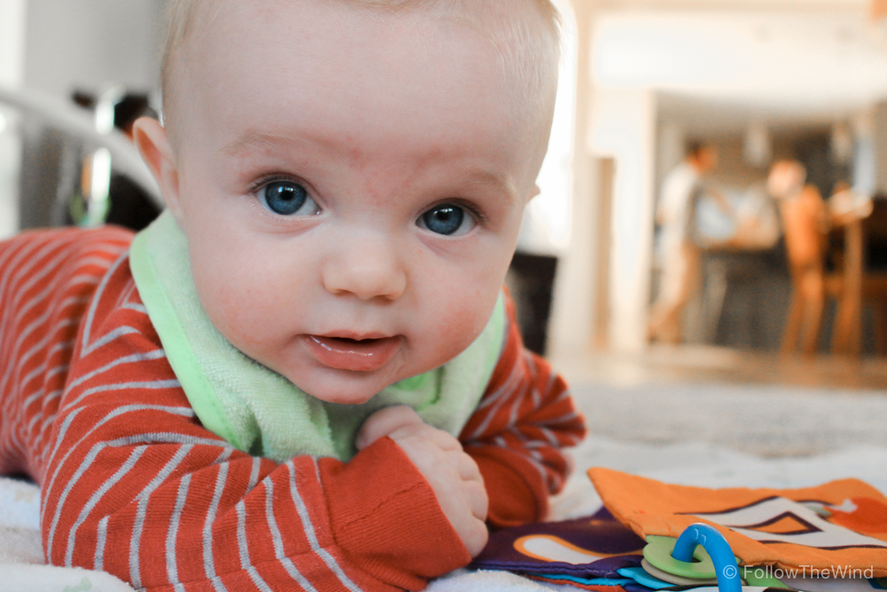 Baby Bennett Portland Oregon