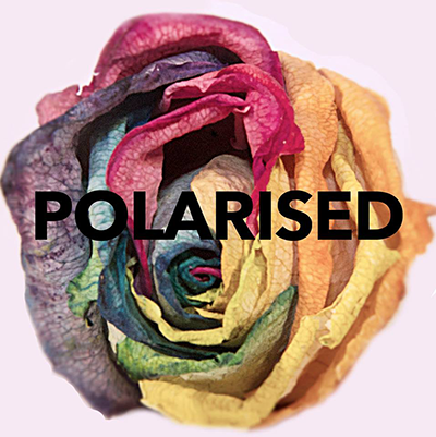 polaroized.png