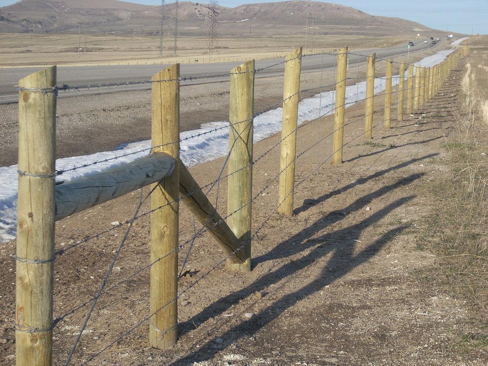 Deer,Farm, & Field Fence — Custom Fence Company