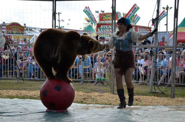 Bearadise Ranch Show Picture.jpg