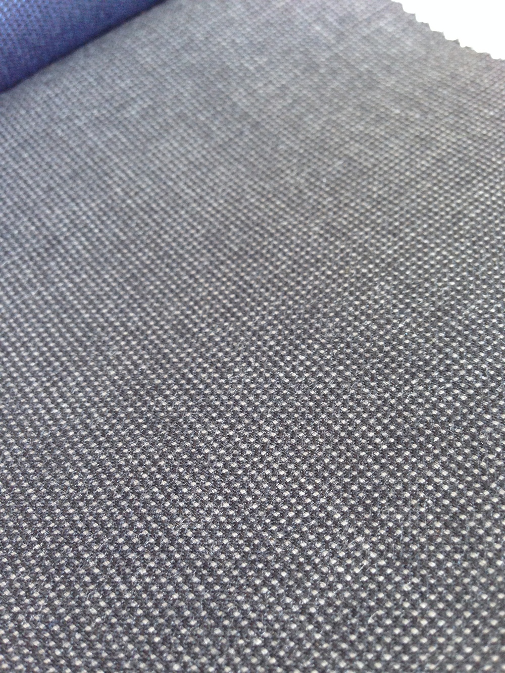 Often confused with nailhead, this pindot is a true chameleon, changing from mid-grey in sun to almost charcoal by night.