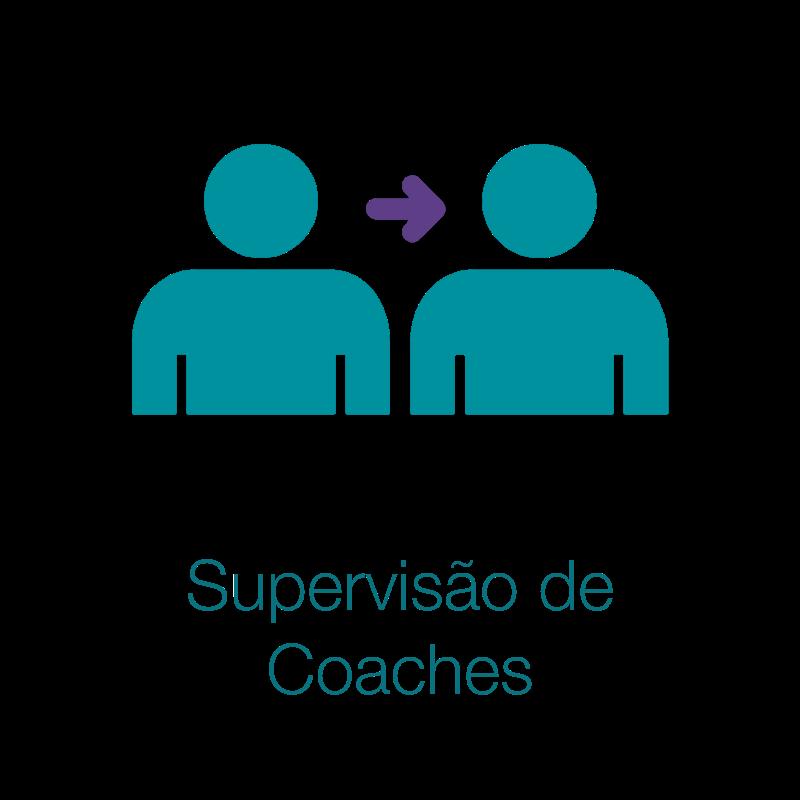 Supervisa_o_de_Coaches4df061.png