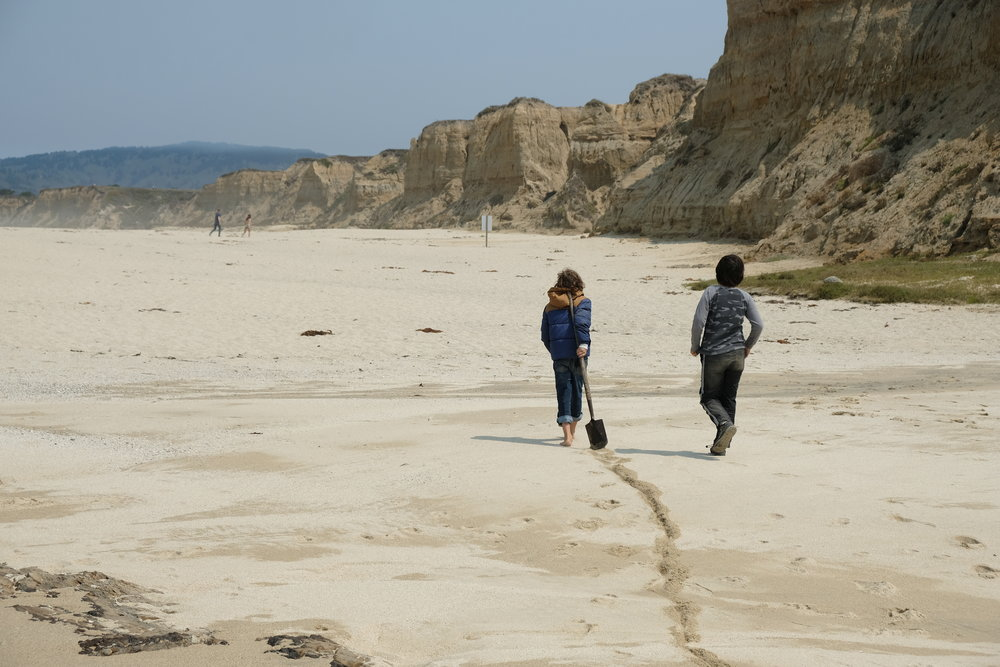 Brody and Alex walk with their shovel down the beach.