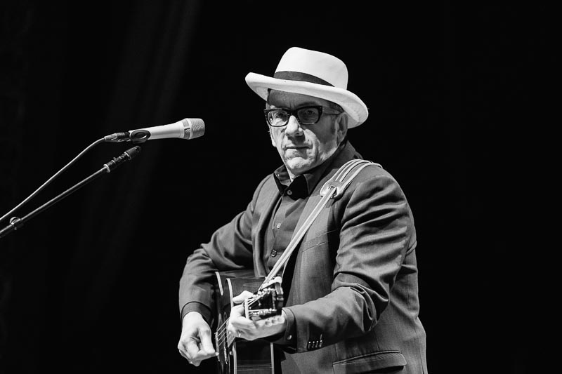Elvis Costello - Pitch - 1.jpg