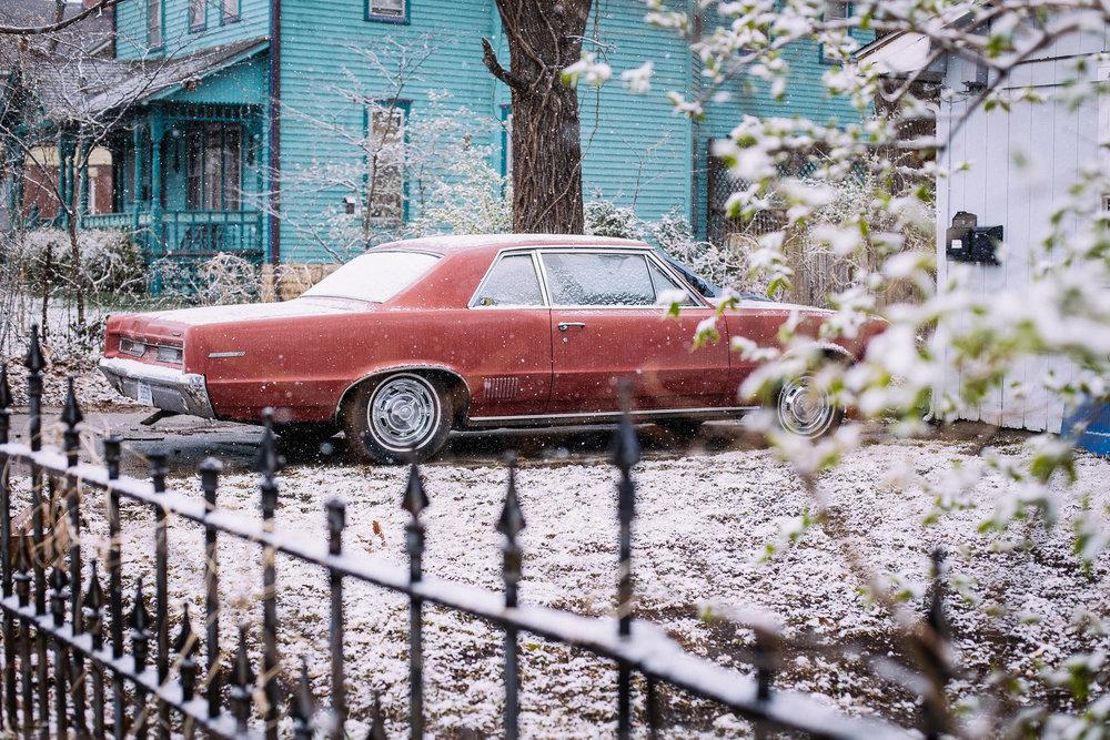 Sarah - snow day - 6.jpg