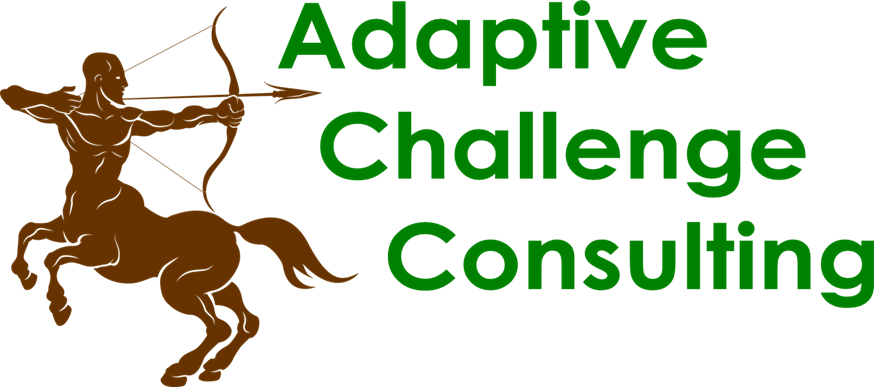 Adaptive Challenge Consulting