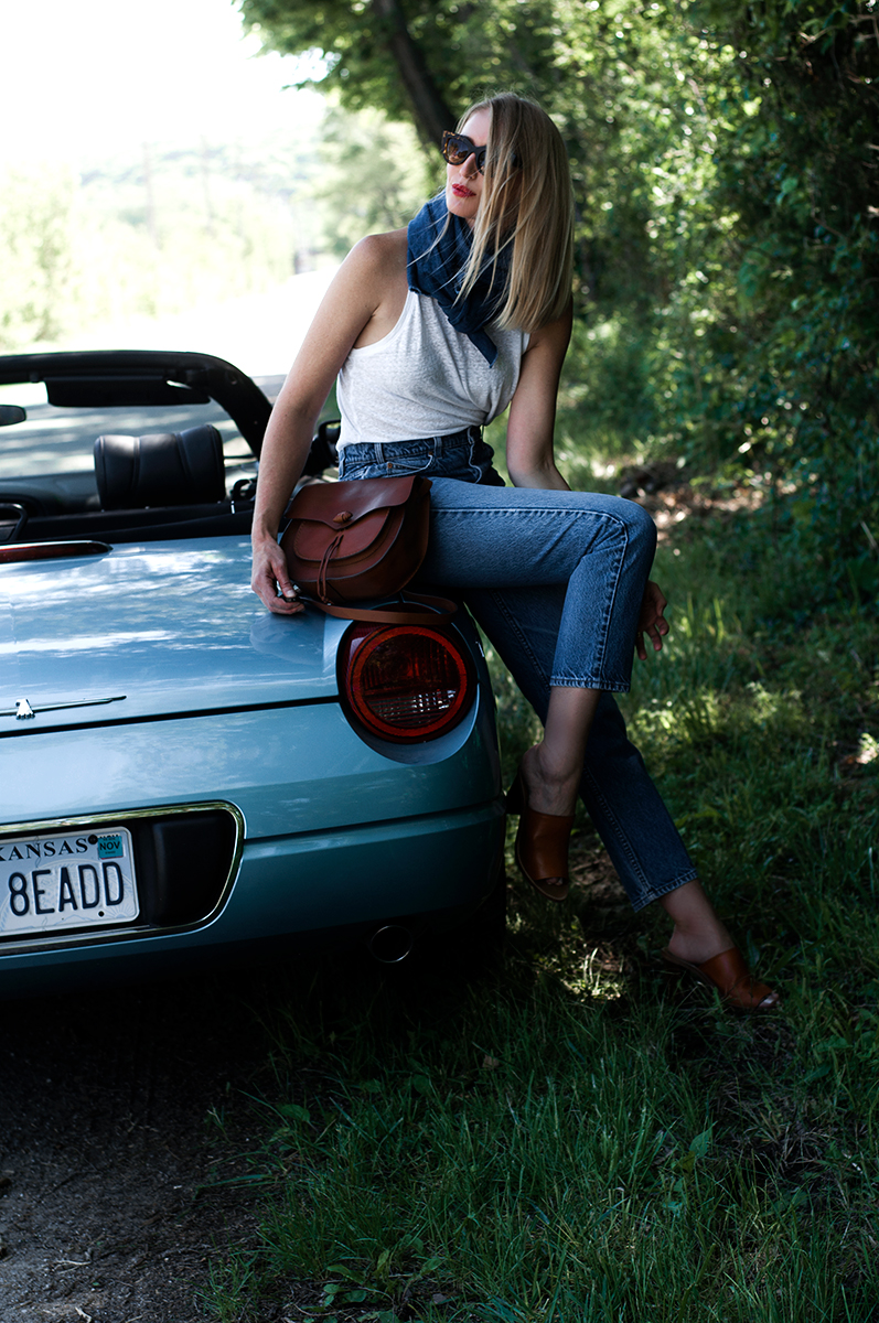 Madewell Savannah Saddlebag
