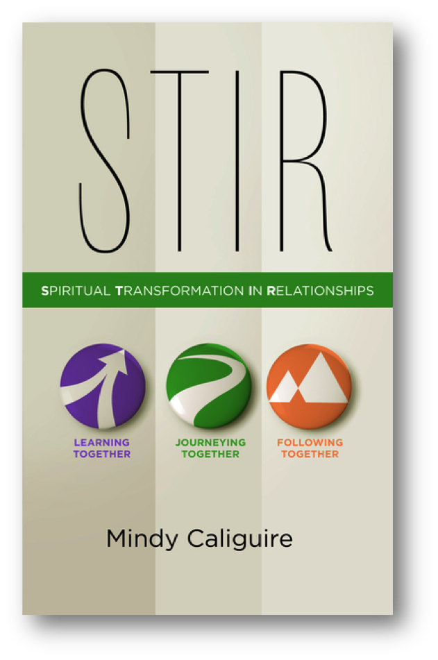 STIR Book Cover.png