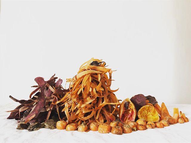 Compost Composition No 54