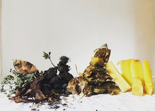 Compost Composition No 55
