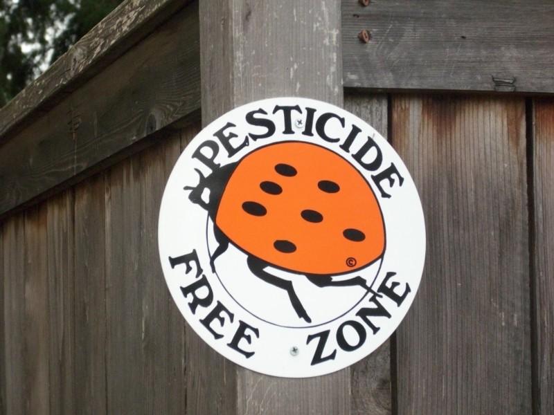 Keep Bugs Safe