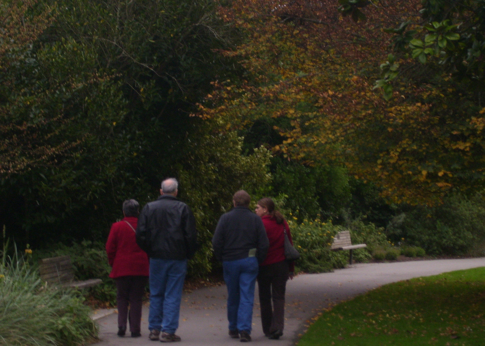 Two Couples Walking