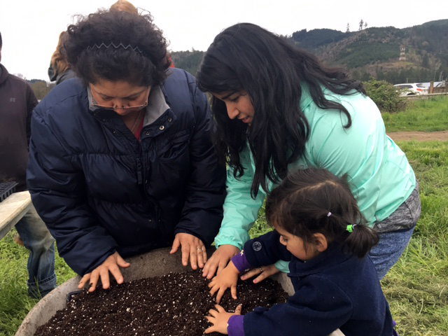 Three generations of a family stick their hands in a big pot of soil. They're learning about propagation.