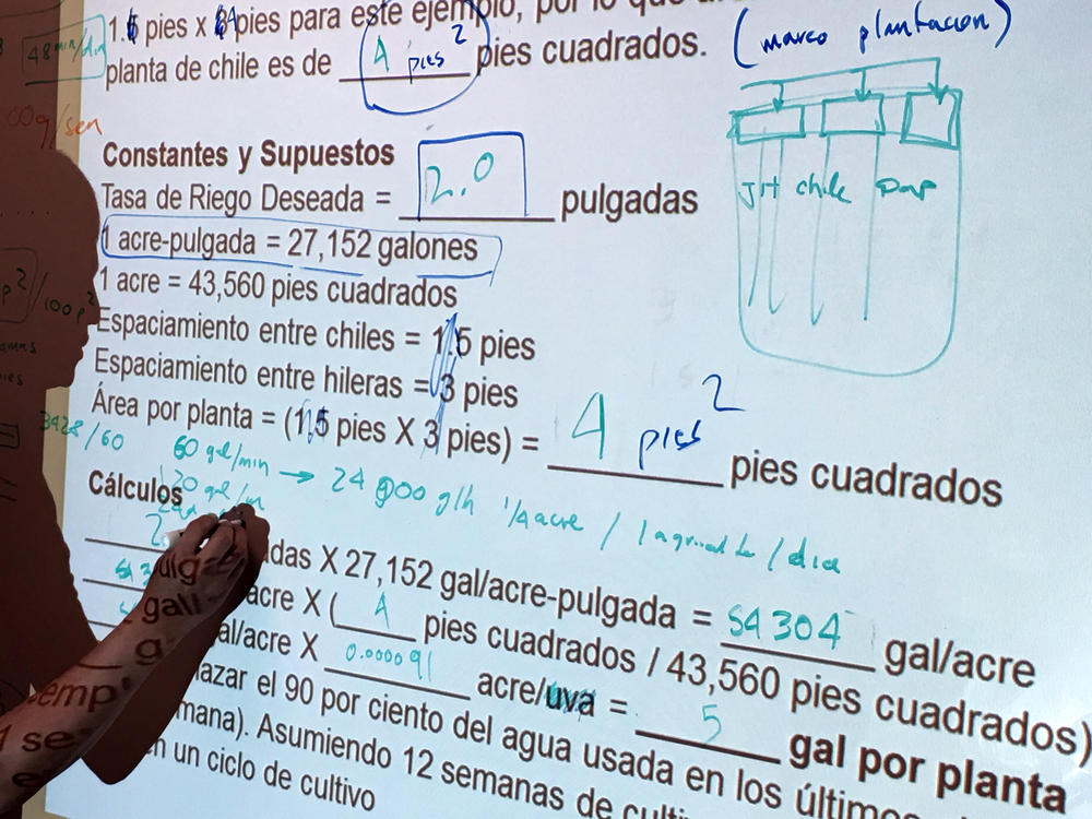 A student works out watering calculations on the whiteboard at farm business class.