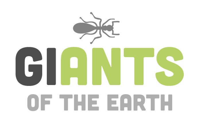 The new identity celebrates the insect species.