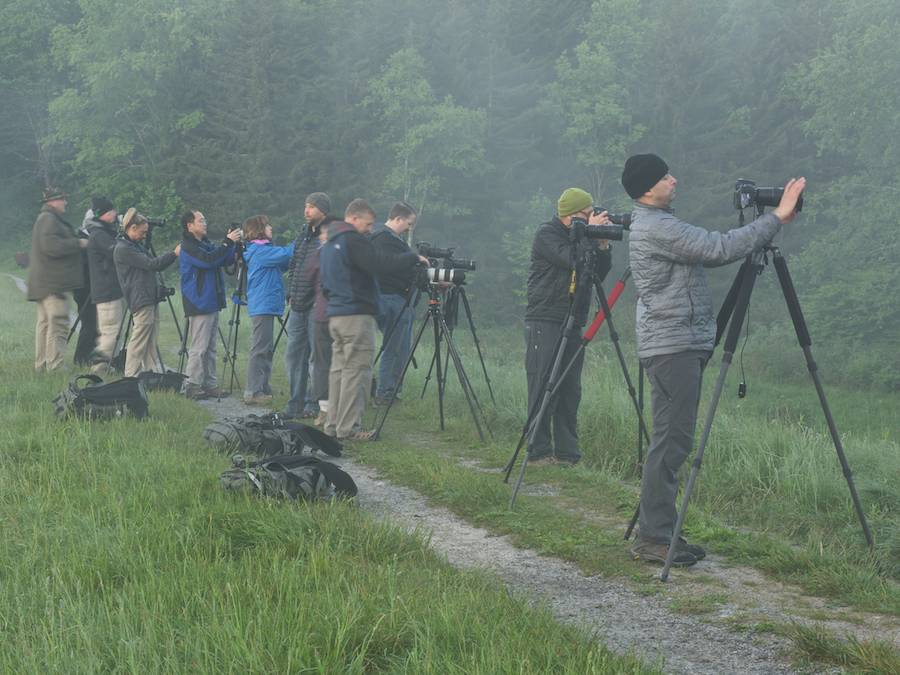 "The ""firing line"" -- early morning shoot at Spruce Knob Lake, WV"