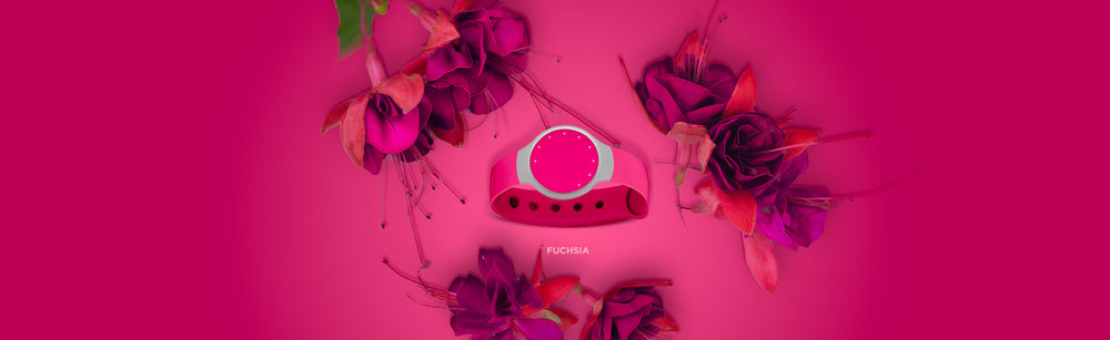 STORE_flash_banner_images_fuchsia.jpg