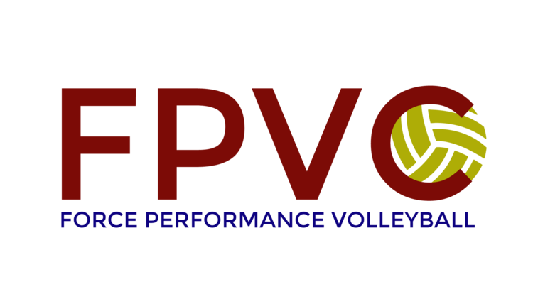 Force Performance Volleyball