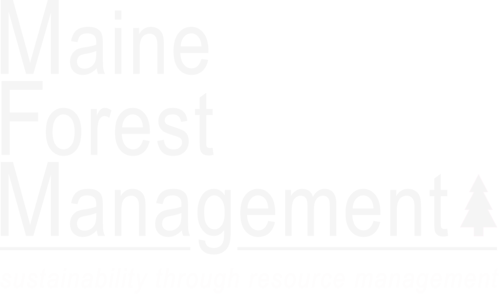 Maine Forest Management