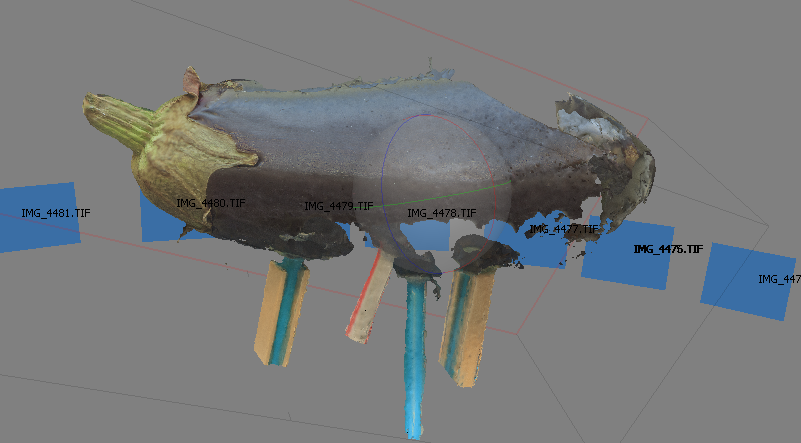 Photogrammetry Scan