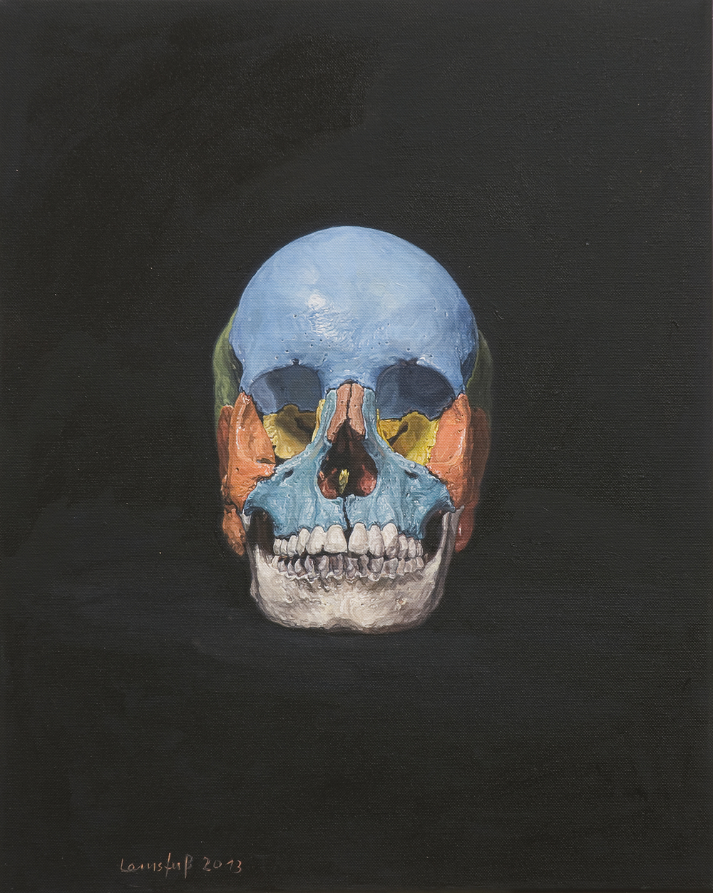 Ulrich Lamsfuss   Heike Ollertz/Ulrich Lamsfuss, Made In Germany III, Skull (3B Scientific) No. 2  , 2013   oil on canvas   19.69 x 15.75 inches   50 x 40 cm