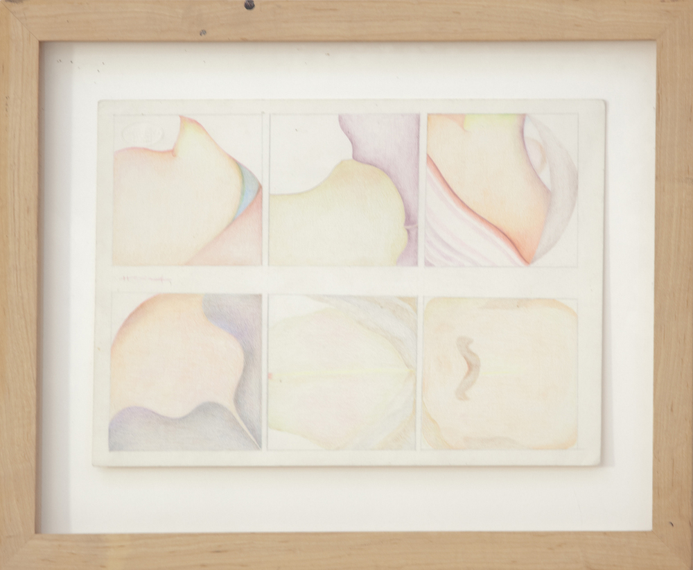 347_Painted_color pencil on paper_15 x 18.5%22_1978_AB.jpg