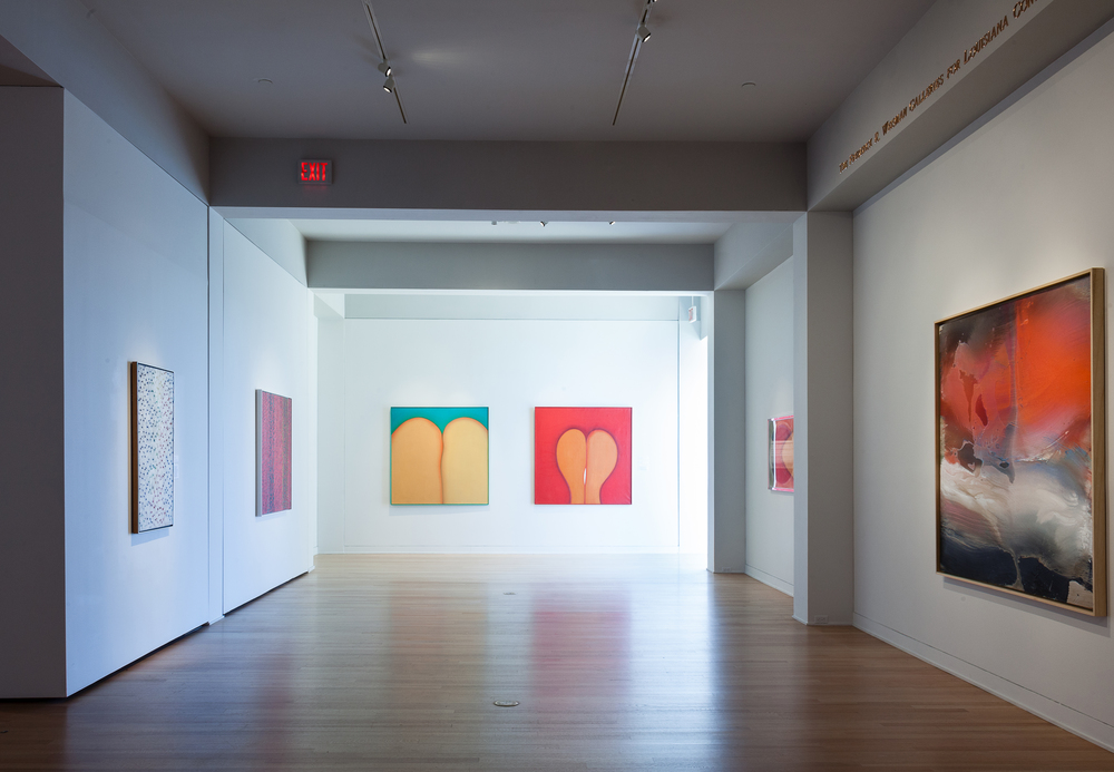 Huguette Caland   Prospect 3: Notes for Now, 2014 installation at New Orleans Museum of Art